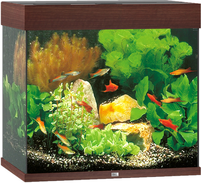 Juwel Lido 120 aquarium LED donkerbruin
