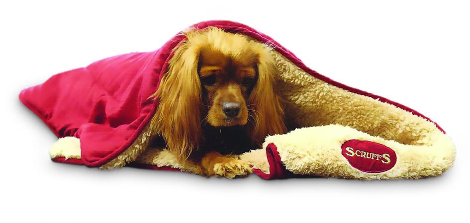 Scruffs Snuggle Blanket assorti