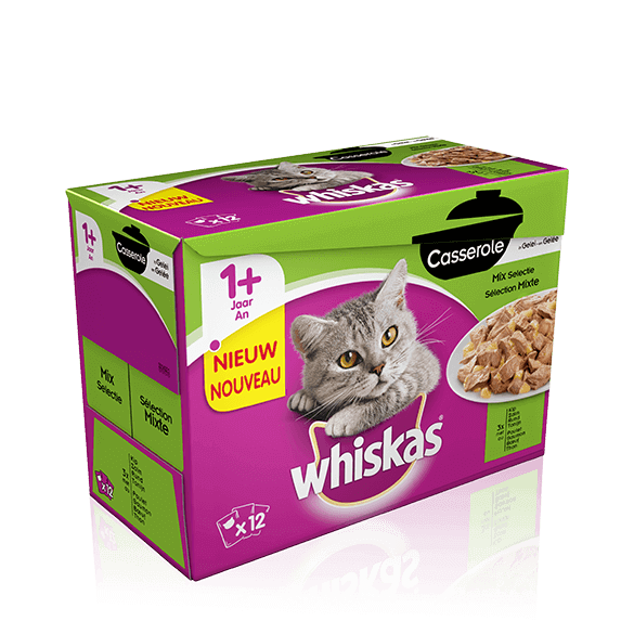 Whiskas Casserole Adult Mix selectie in Gelei 12 x 85 gr