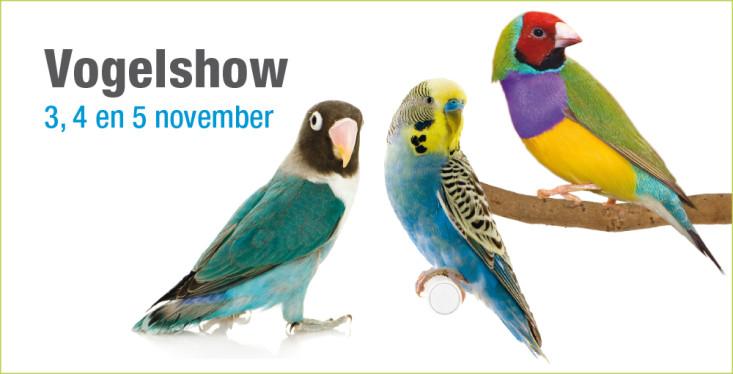 3 t/m 5 november: Vogelshow