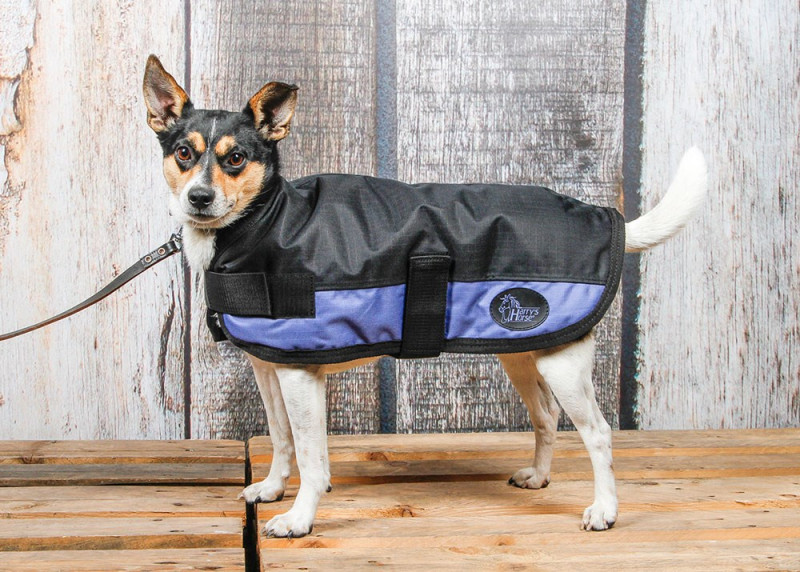 Harry's Horse hondendeken jet/black