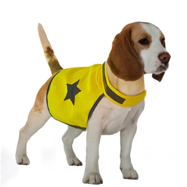 Veiligheidsjasje ster