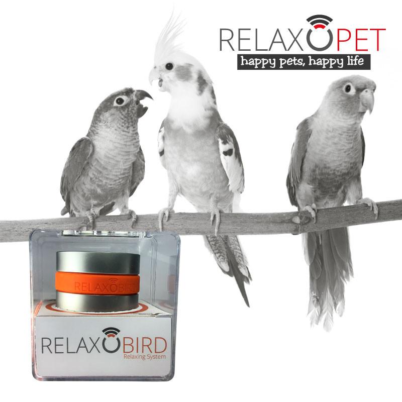 RelaxoBird Smart