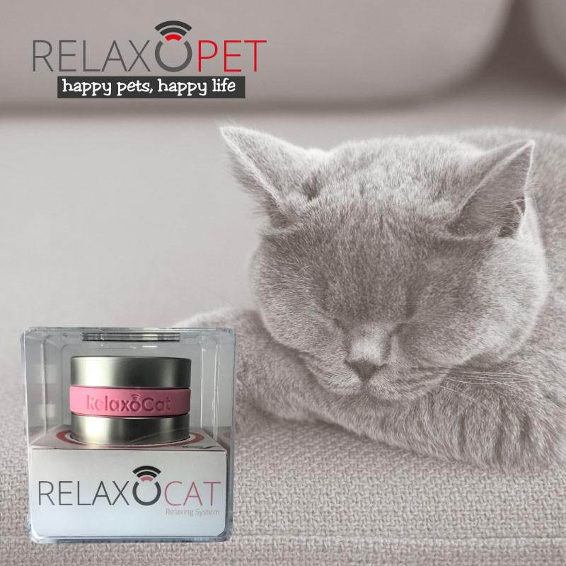 RelaxoCat Smart