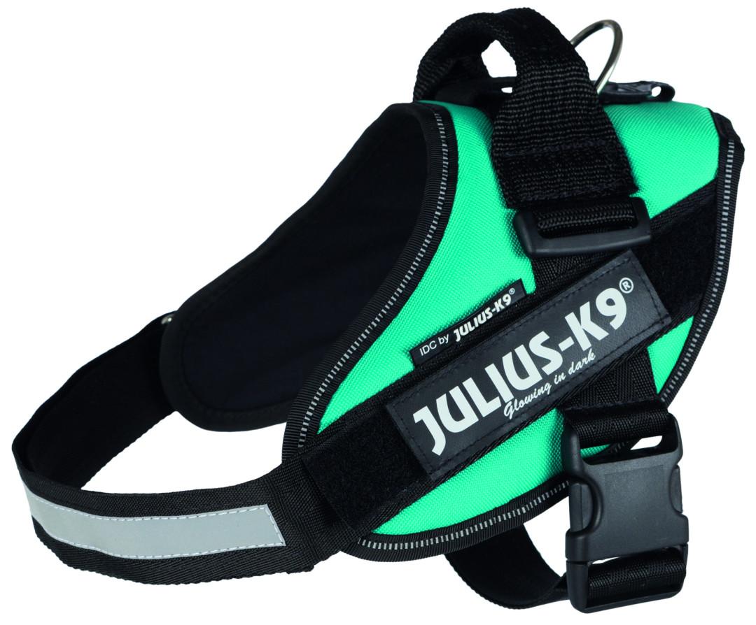 Julius K9 IDC harness petrol