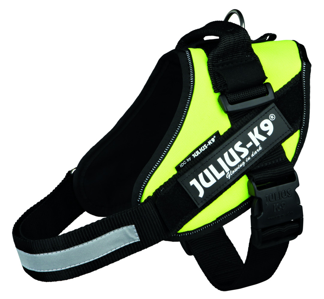 Julius K9 IDC harness neon yellow