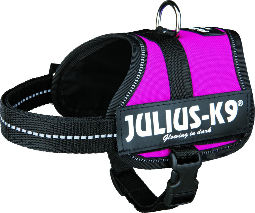 Julius K9 Powerharness fuchsia