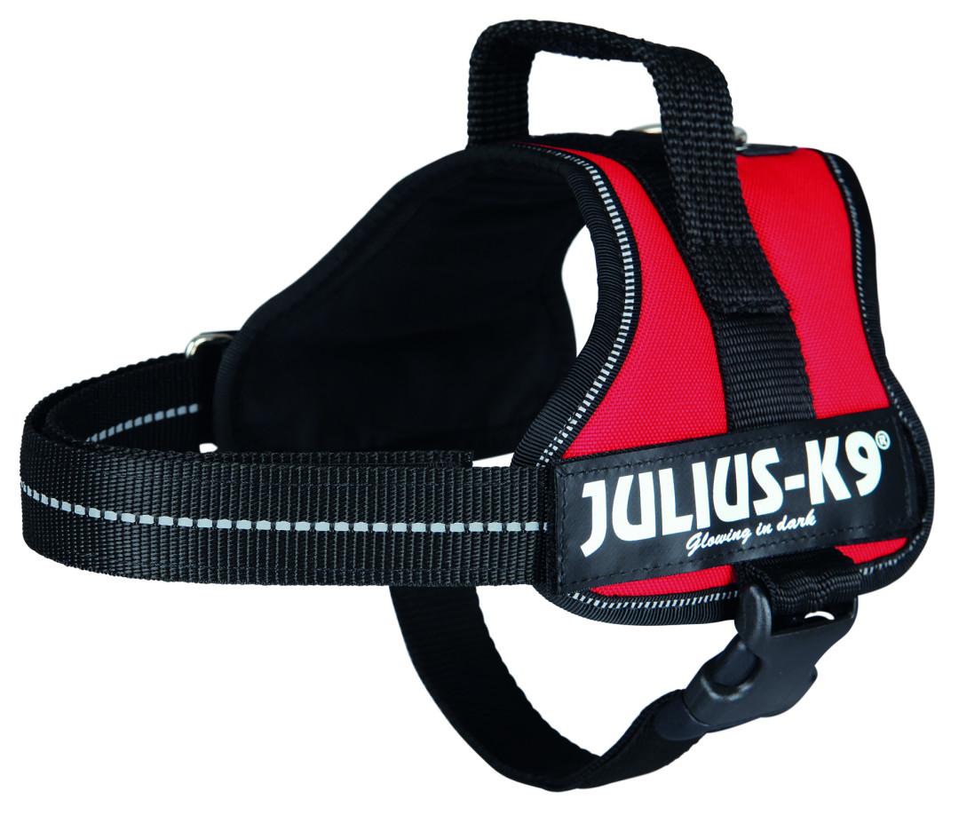 Julius K9 Powerharness red