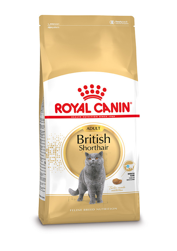 Royal Canin kattenvoer British Shorthair Adult <br>10 kg