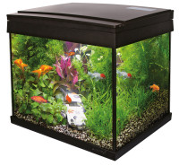 SuperFish Aqua 20 LED Goldfish kit aquarium thumb