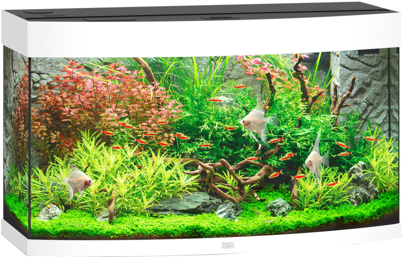Juwel Vision aquarium 180 LED wit