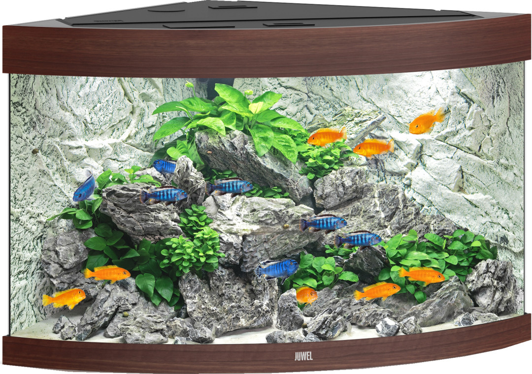 Juwel aquarium Trigon 190 LED donkerbruin