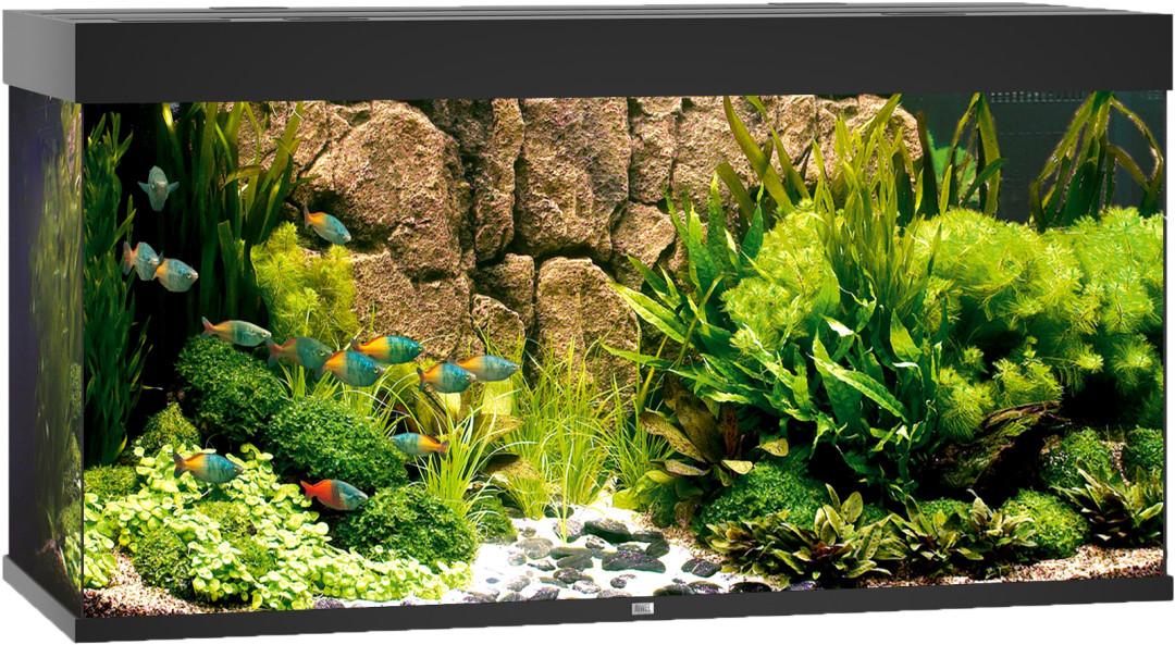 Juwel aquarium Rio 350 LED zwart