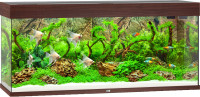 Juwel Rio aquarium 240 LED donkerbruin thumb