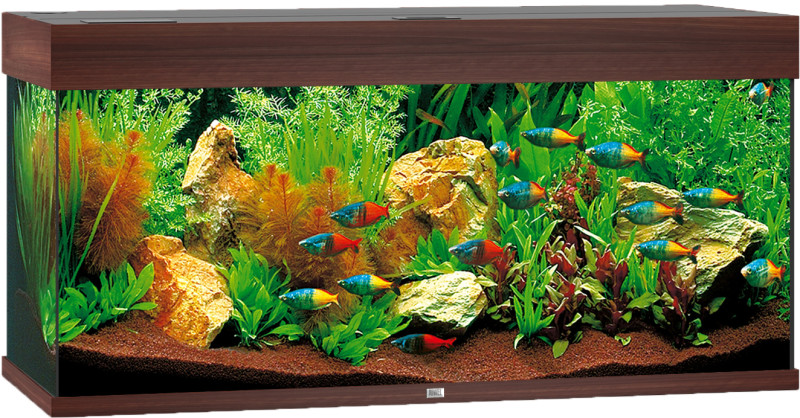 Juwel Rio aquarium 180 LED donkerbruin