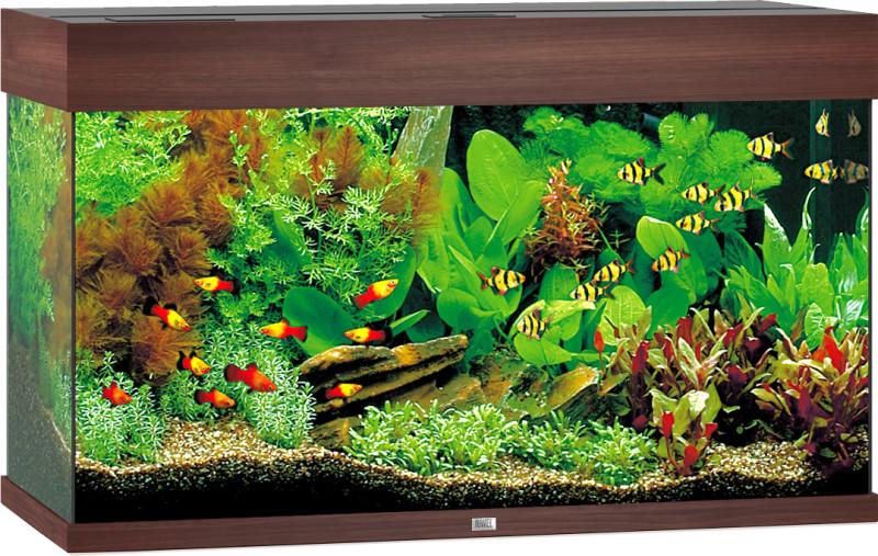Juwel aquarium Rio 125 LED donkerbruin