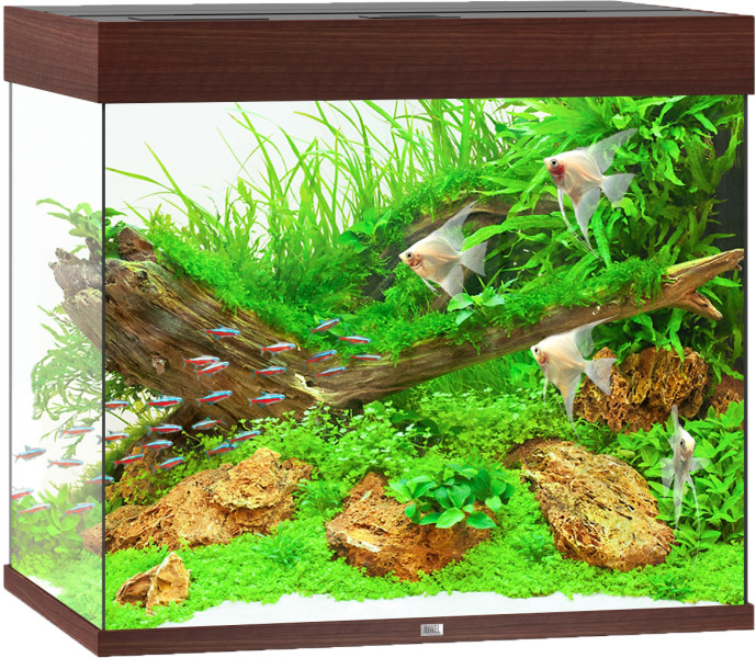 Juwel Lido aquarium 200 LED donkerbruin