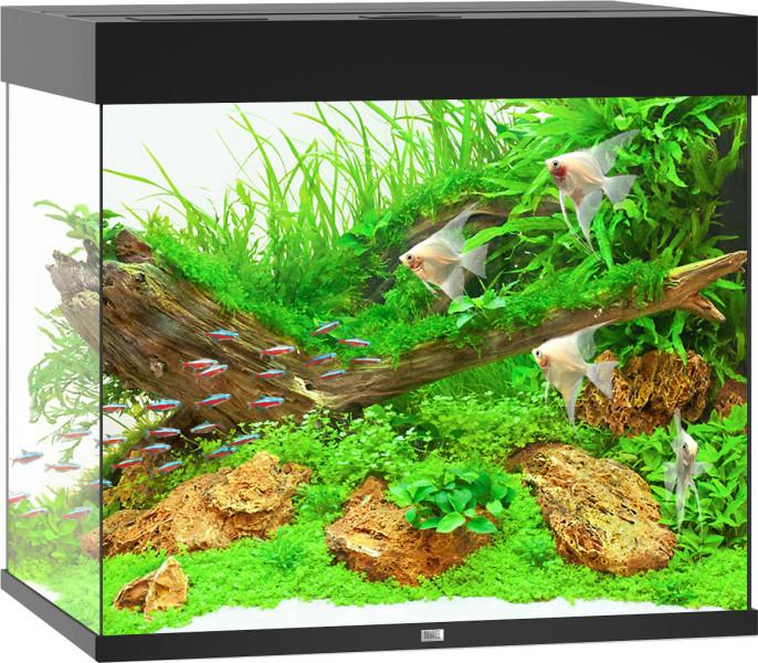 Juwel aquarium Lido 200 LED zwart