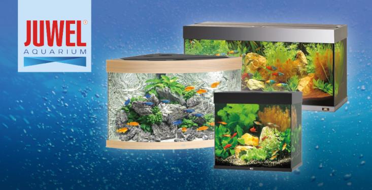 Juwel aquaria, bij ons altijd voordelig