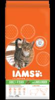 IAMS kattenvoer Adult lamb 15 kg thumb