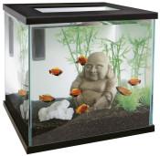 Zen_Aquarium.jpg