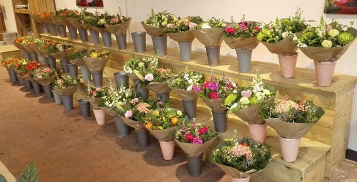 Kwaliteitsbloemen met versgarantie