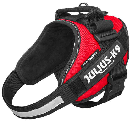 Julius K9 IDC Powerharness red