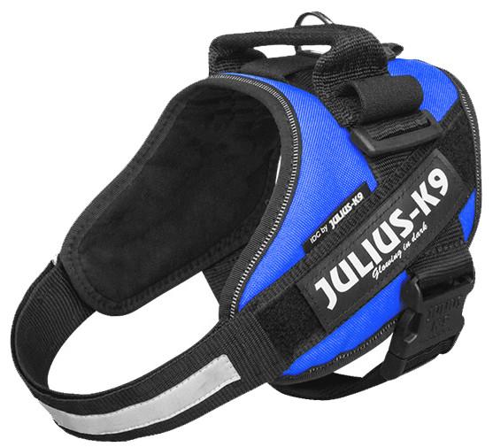 Julius K9 IDC Powerharness blue