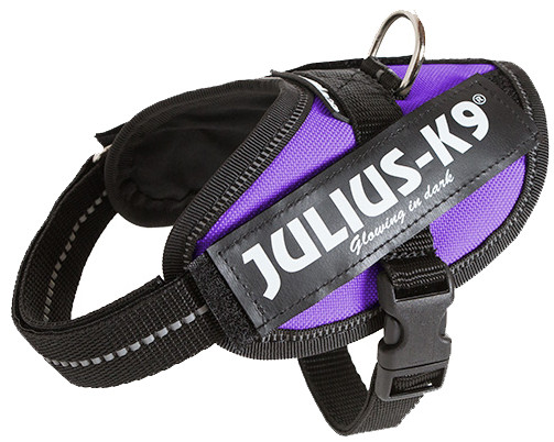 Julius K9 IDC Powerharness purple