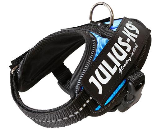 Julius K9 IDC Powerharness aquamarine