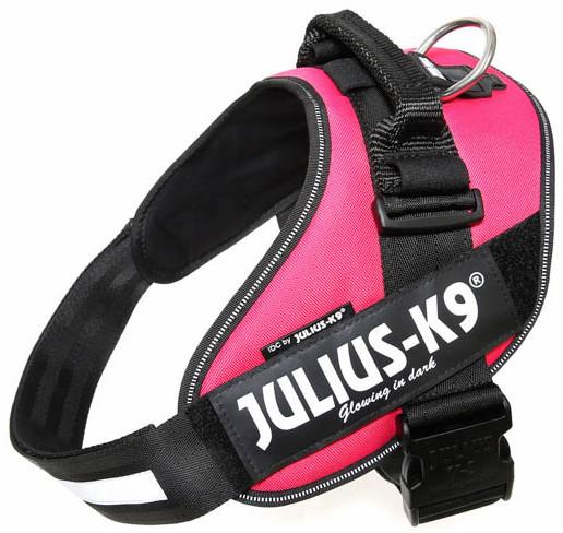 Julius K9 IDC Powerharness dark pink