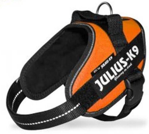 Julius K9 IDC Powerharness UV orange