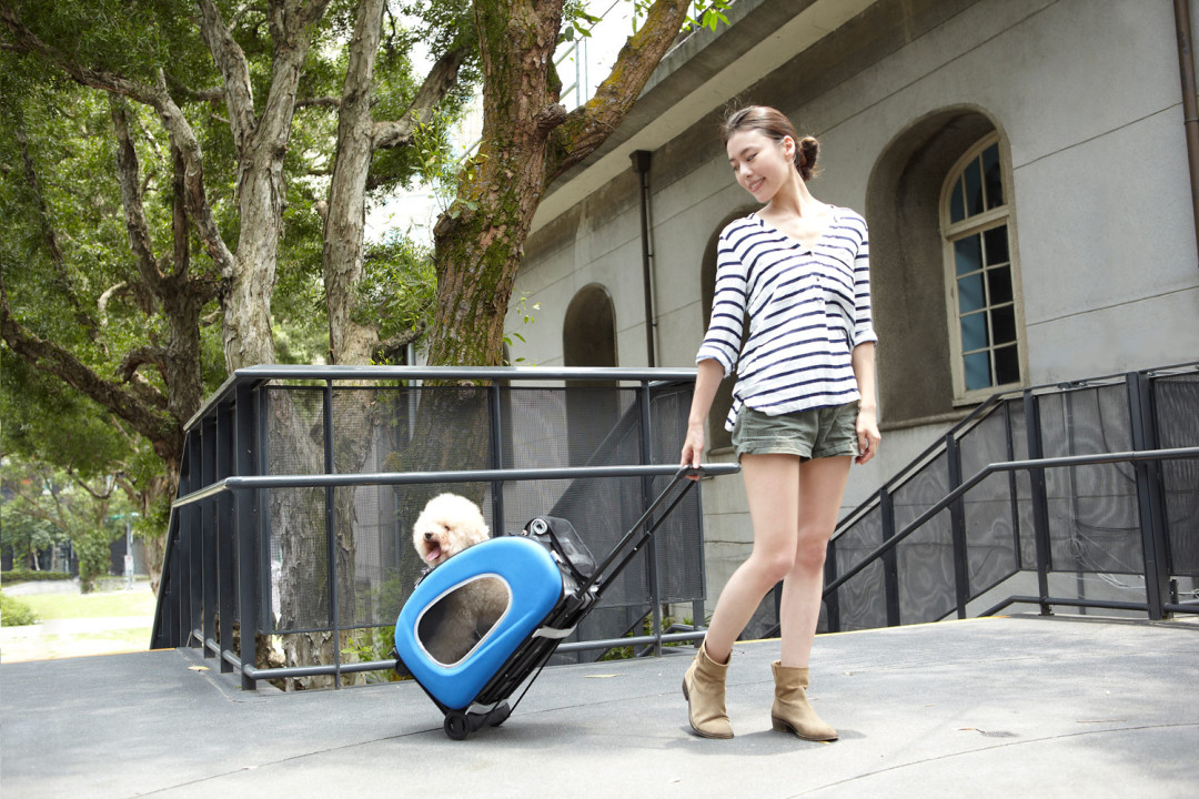 Innopet buggy 5 in 1 blue