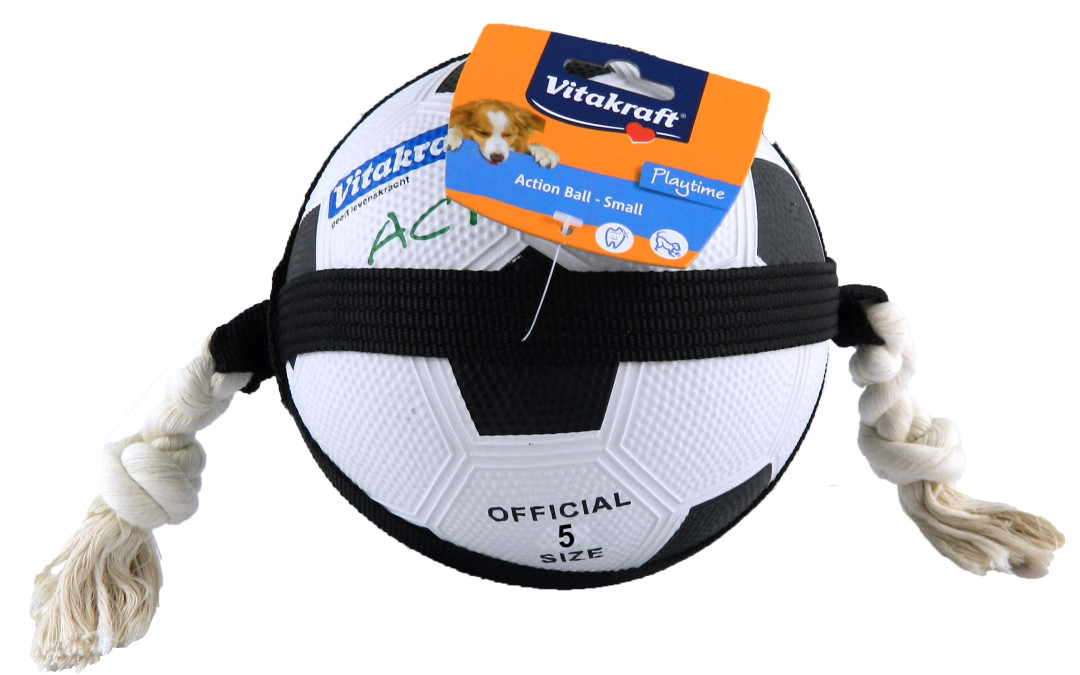 Hondenspeelgoed Action Ball 22 cm