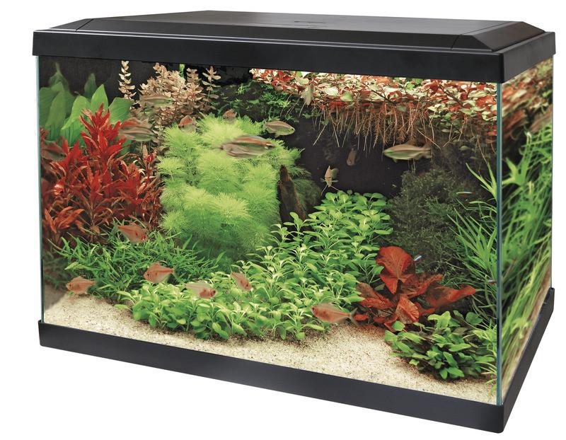 SuperFish aquarium Aqua 70 LED Tropical kit zwart
