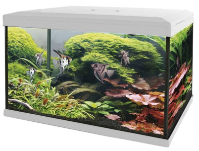 SuperFish aquarium Aqua 70 LED Tropical kit wit