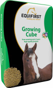 502020_EQF_Growing Cube-HD-CMYK.jpg