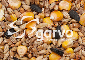 Garvo Gemengd Graan en zonnepit 20 kg