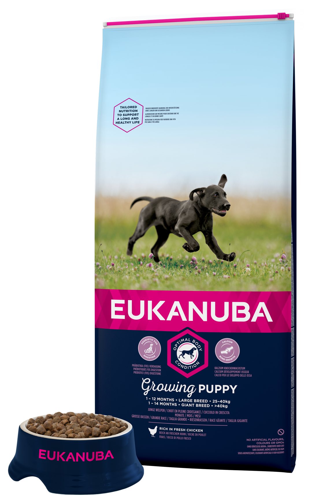Eukanuba hondenvoer Growing Puppy Large Breed 12 kg