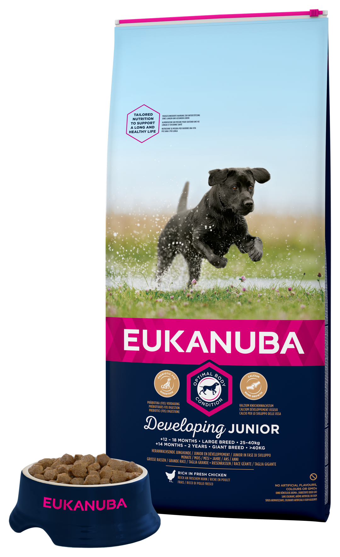 Eukanuba hondenvoer Developing Junior Large Breed 12 kg