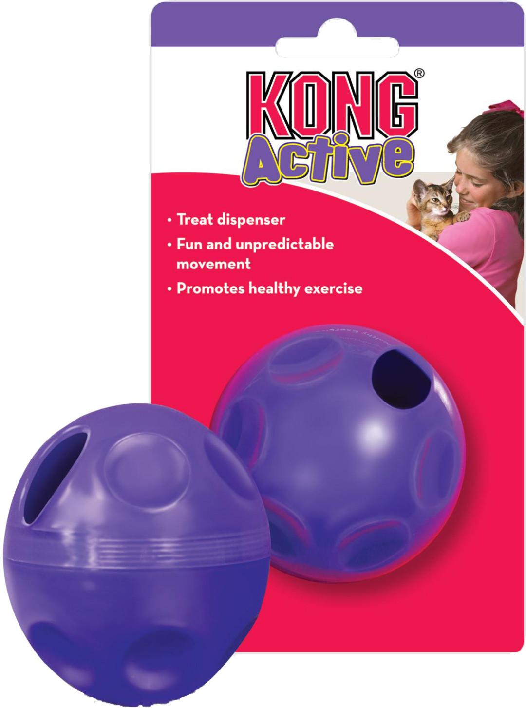 Kong Treat Ball