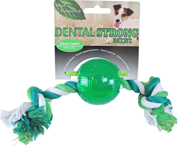 Dental Strong Mini bal met floss 6 cm groen