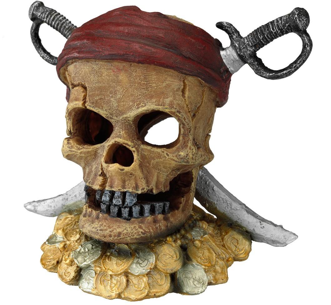 Aqua D'ella pirate skull sword head