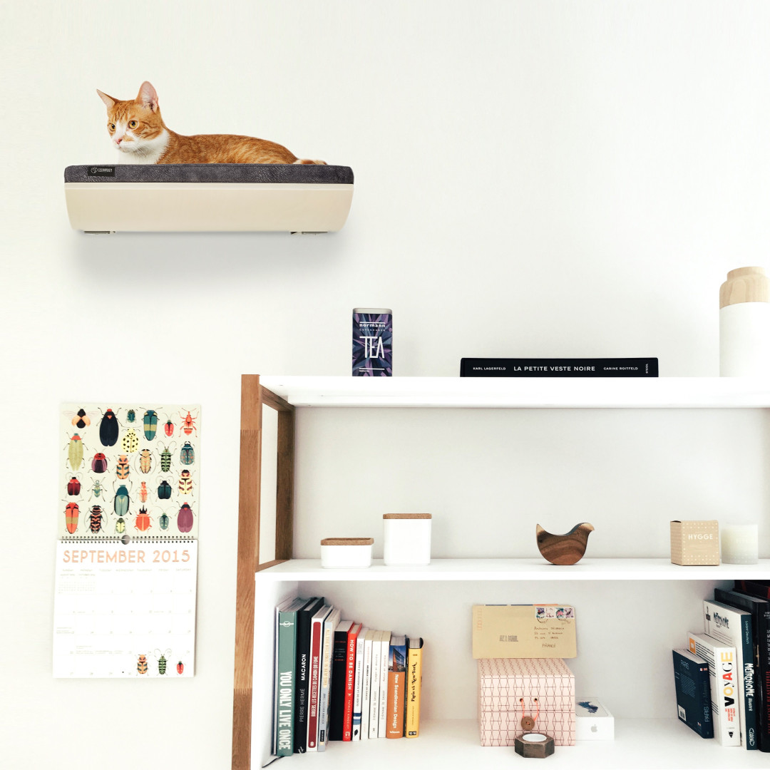 COSY AND DOZY CHILL cat shelf maple/smooth dark grey