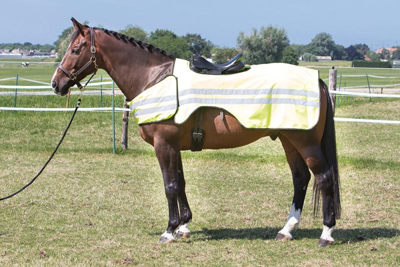 Harry's Horse Reflective uitrijdeken