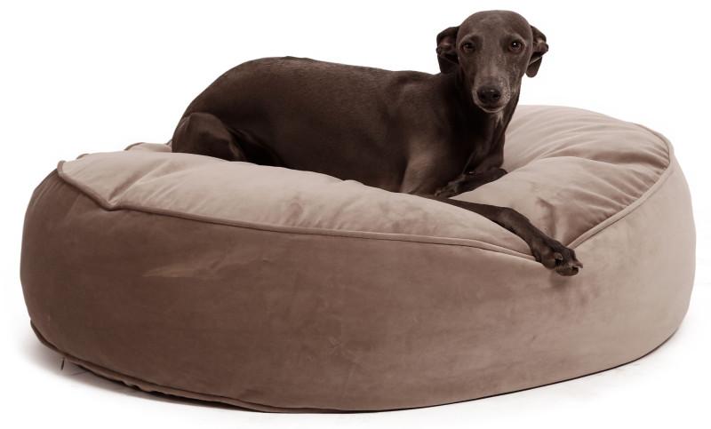 Hondenmand of hondenkussen kopen? animal world