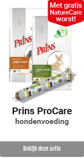 Prins ProCare gratis premium