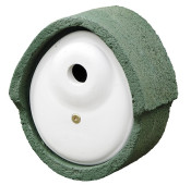 906060119 CJW WoodStone 32mm OVAL Green.jpg