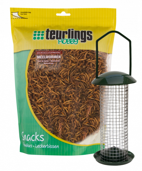 Teurlings meelwormen 500 gr + feeder