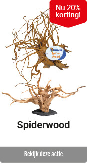 Superfish Spiderwood 20% korting